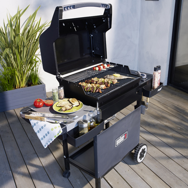 barbecue castorama barbecue weber spirit e210 prix 549 eur ventes pas. Black Bedroom Furniture Sets. Home Design Ideas